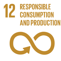 Global Goal 12: Responsible Consumption and Production